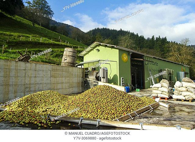 Apples waiting for the process of making cider. Sidrería Urbitarte, Ataun, Guipuzcoa, Basque Country, Spain