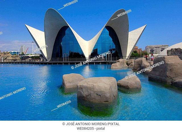 Oceanografic (aquarium), architect Felix Candela. City of Arts and Sciences by S. Calatrava, Valencia. Comunidad Valenciana, Spain