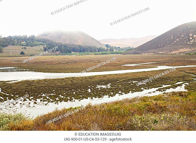 Morro Estuary Natural Preserve and wetland are home to dozens of endangered species, San Luis Obispos County, California