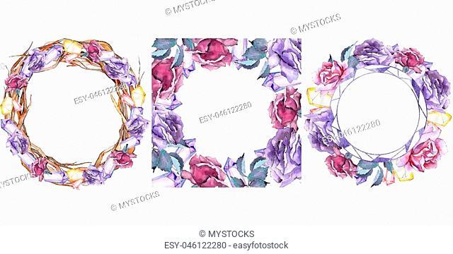 Colorful rose. Floral botanical flower. Frame border ornament square. Aquarelle wildflower for background, texture, wrapper pattern, frame or border