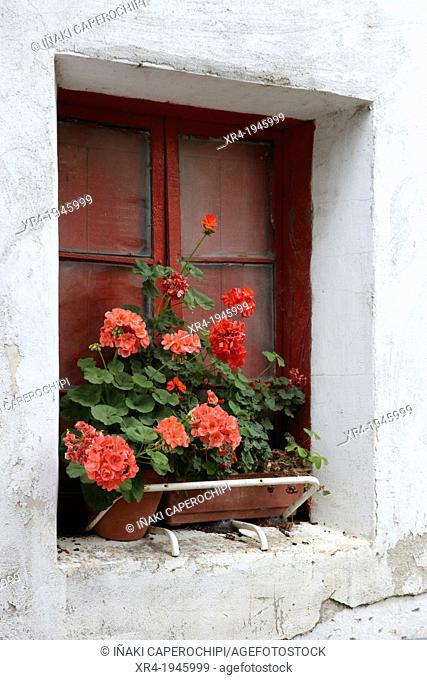 Red window and flowers of Basque farmhouses, Quarter Iraeta, Zestoa (Cestona), Gipuzkoa, Basque Country, Spain