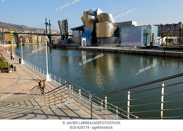 Guggenheim Museum. Bilbao. Bizkaia. Euskadi. Spain