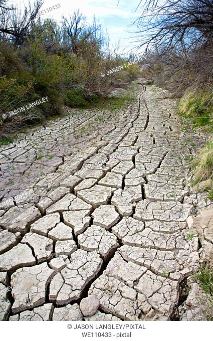 Dry cracked ground in a dried stream bed during a desert drought  Big Bend National Park, Texas, United States
