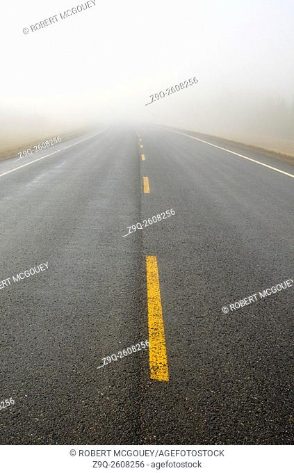 A straight section of an Alberta two lane highway disapearing into the mist