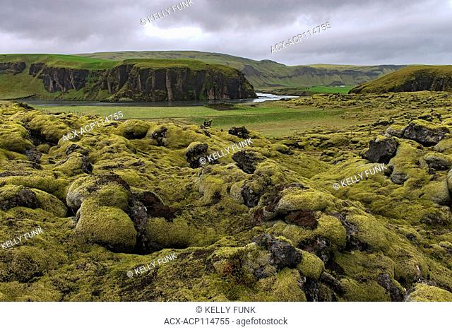 Heavy moss covers large chunks of broken, exposed lava in southern Iceland, Europe