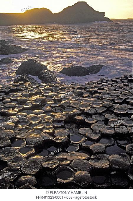 View of coast at sunset, Giant's Causeway, County Antrim, Northern Ireland