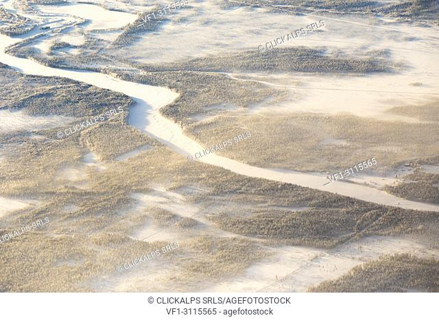 Aerial view of forest in the frozen landscape, Levi, Kittila, Lapland, Finland