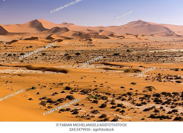 Red sand dunes in the Sossusvlei valley. Namib Naukluft National Park. Namib Desert, Namibia