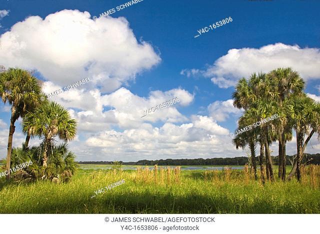 Myakka River State Park Sarasota Florida