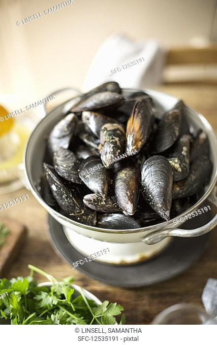 Raw mussels in colander