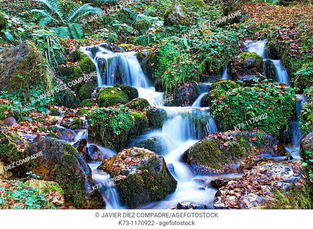 Waterfall. Redes Natural Park and Biosphere Reserve. Concejo de Caso. Asturias. Spain