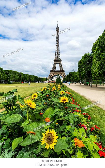 Row of flowers near Eiffel Tower, Paris, Ile de France, France