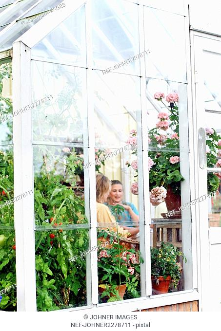 Women talking in greenhouse