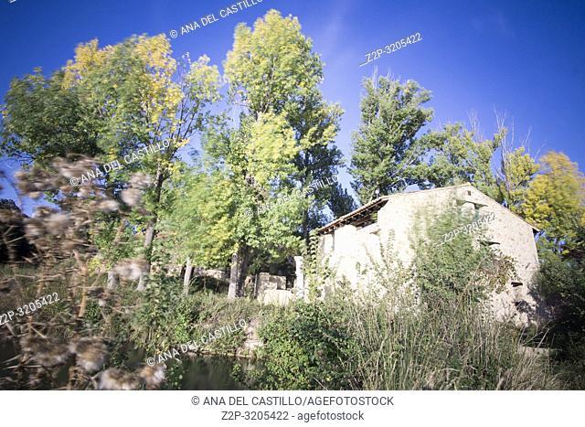 Autumn poplars and pond in Mora de Rubielos Teruel Aragon Spain