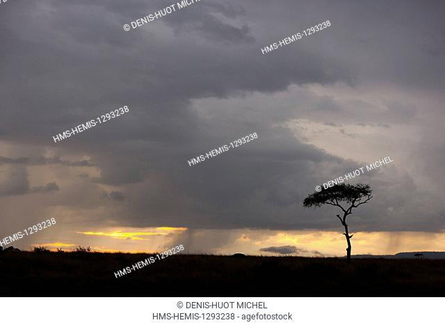 Kenya, Masai Mara national reserve, sunset during bushfires