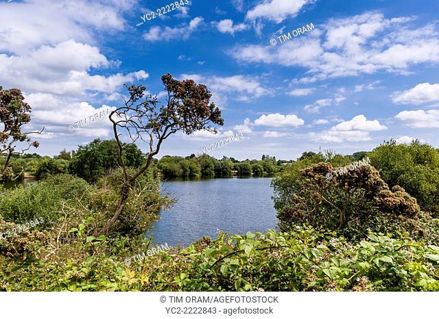 Broome pits near Bungay, Suffolk, England, Great Britain, UK