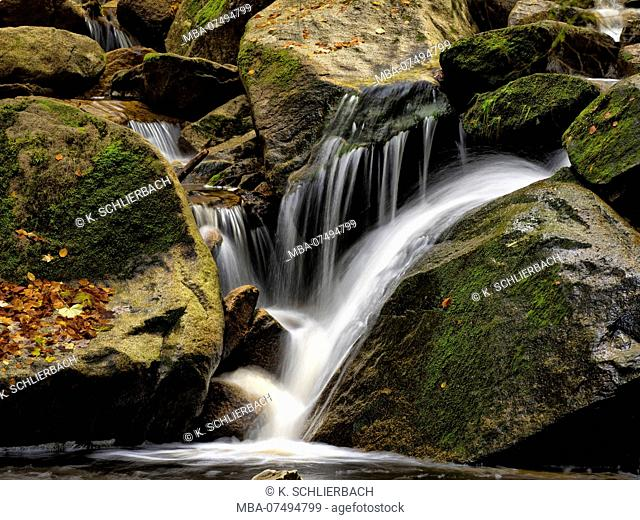 Europe, Germany, Saxony-Anhalt, Harz National Park, Autumn at the Ilse Falls, Ilsetal, Ilsenburg