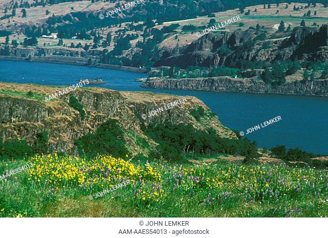 Columbia River Gorge from Rowena, Northern Oregon