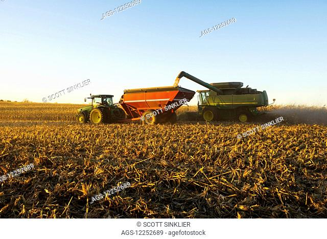 A farmer augers harvested yellow grain corn from a combine into a grain wagon during corn harvest in Southern Iowa; Iowa, United States of America