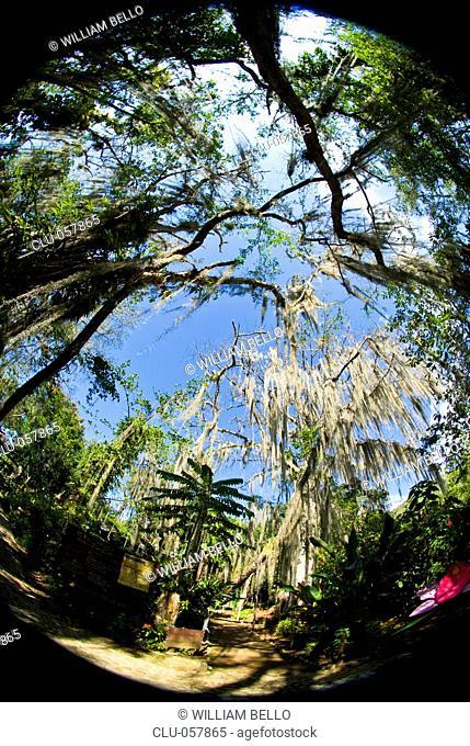 Gallineral Natural Park, San Gil, Santander, Bucaramanga, Colombia