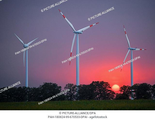 23 August 2018, Germany, Sieversdorf: The setting sun over the landscape with three wind turbines can be seen as a bright red fireball