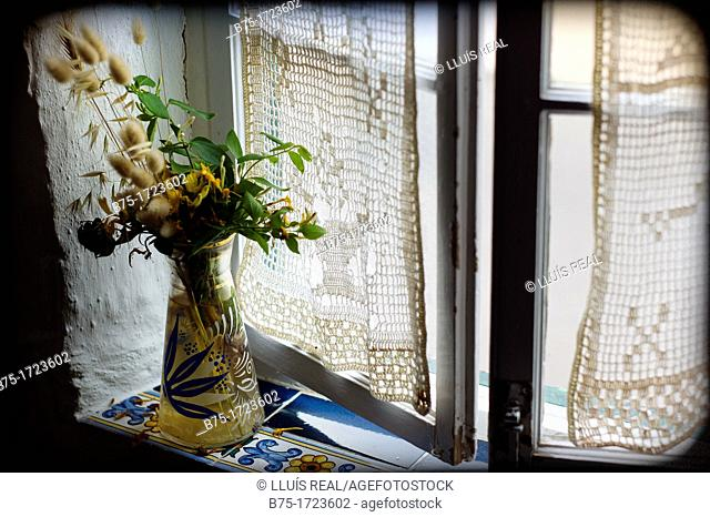 Flores silvestres en una ventana tipica mediterranea en Es Migjorn Gran, Menorca, Balearic Islands, Spain  Wild flowers in a window is typically Mediterranean...