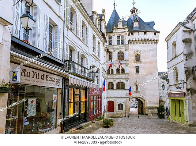 Gate Picois of the Old Town of Loches, Label City and Country of Art and History, Indre-et-Loire Department, Centre-Val de Loire Region, Loire valley, France