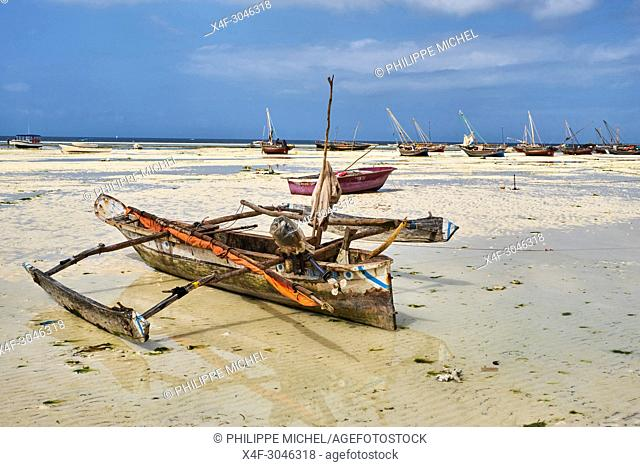 Tanzania, Zanzibar island, Unguja, Kizimkazi village, the beach