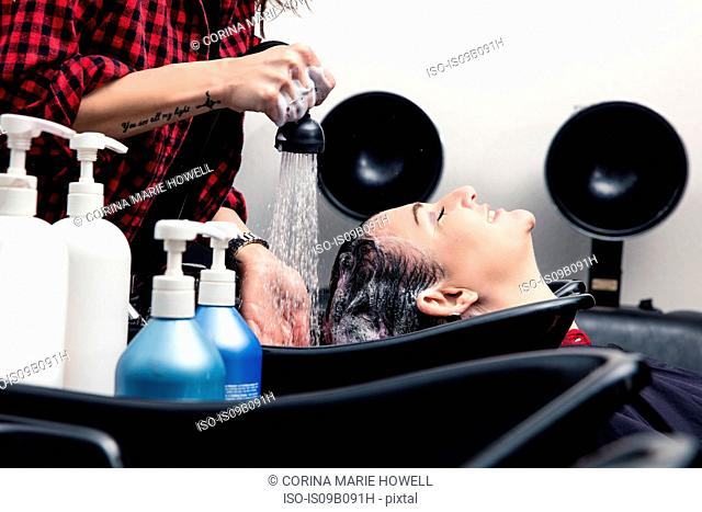 Shampoo girl rinsing customer's hair in salon
