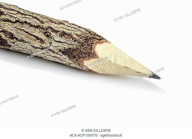 Close up of a wood pencil, on white background