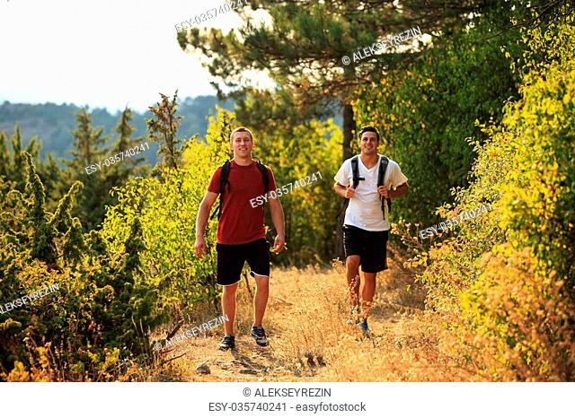 PIcture of a two hikers walking in the forest