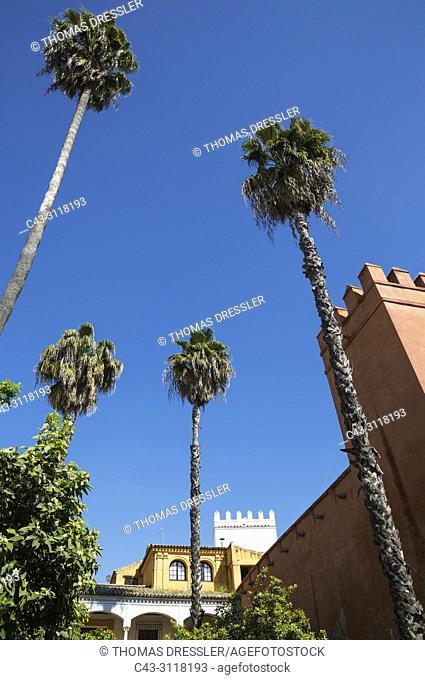 The Alcubilla garden in the Alcazar of Seville. Seville province, Andalusia, Spain