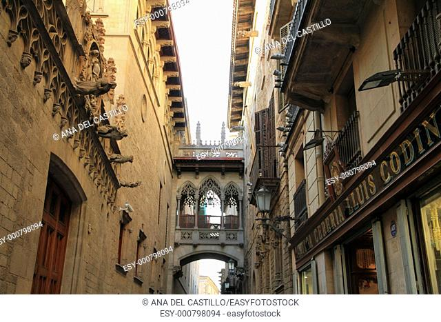 Carrer del Bisbe near cathedral, Gothic quarter, Barcelona, Catalonia, Spain