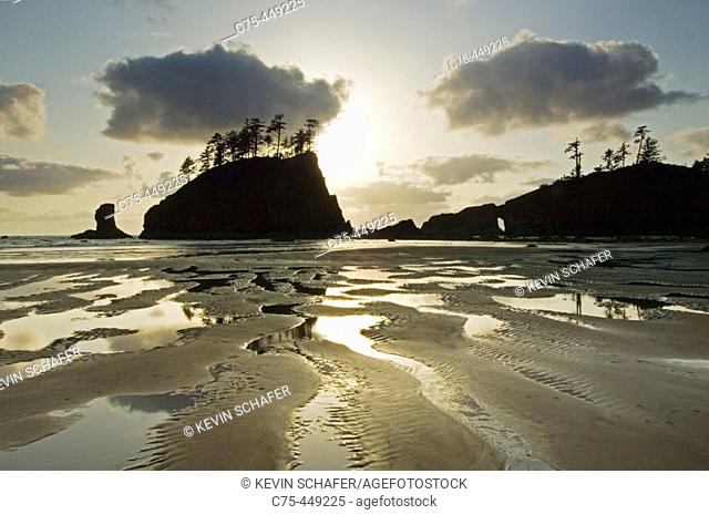 Natural Arch and offshore stack. Coastline near La Push. Olympic National Park. Washington. USA