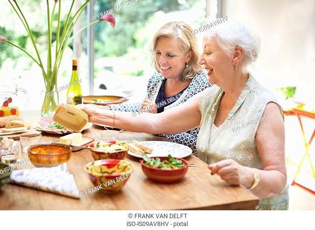 Two women having lunch together at home