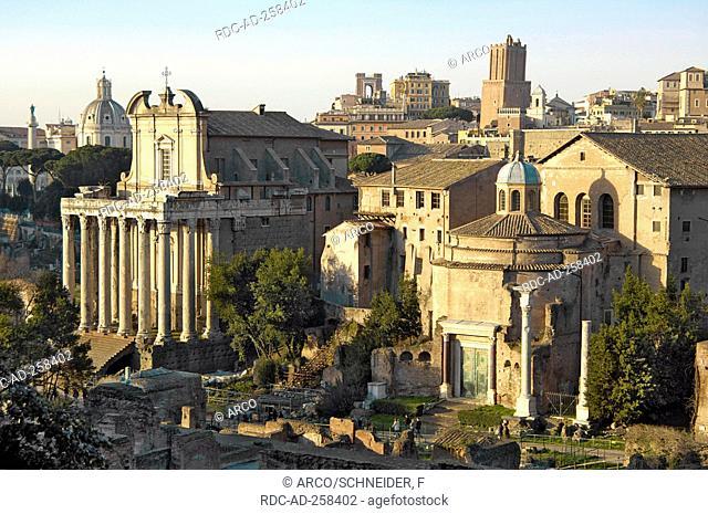Church of San Lorenzo in Miranda former Temple of Antoninus and Faustina Temple of Romulus Roman Forum Rome Lazio Italy Forum Romanum Foro Romano