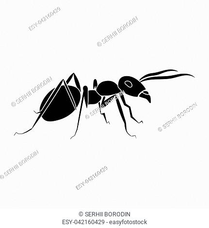Ant it is black color icon