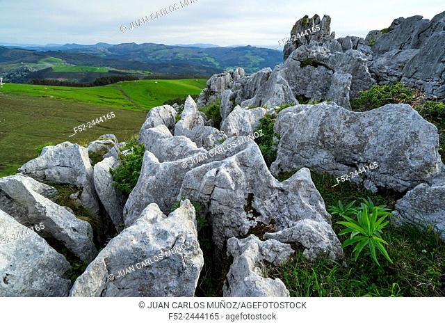 Cerredo mountain, Castro Urdiales, Cantabria, Spain, Europe