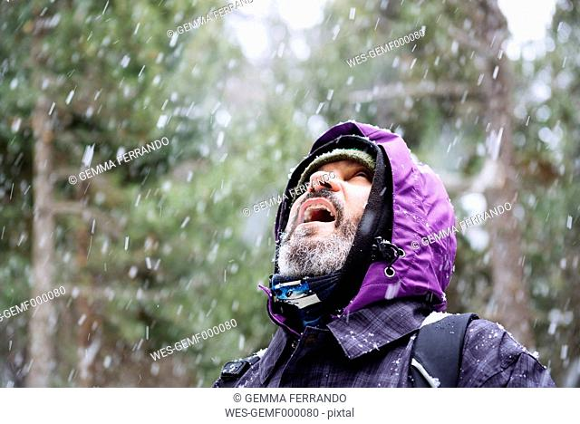 Bearded man looking up in the forest while snowing