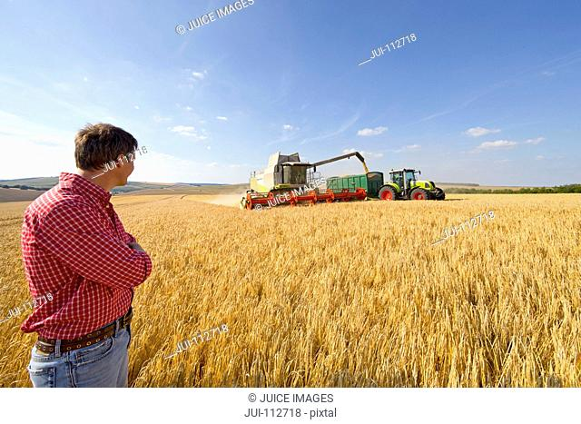 Farmer watching combine harvester fill tractor trailer in sunny field