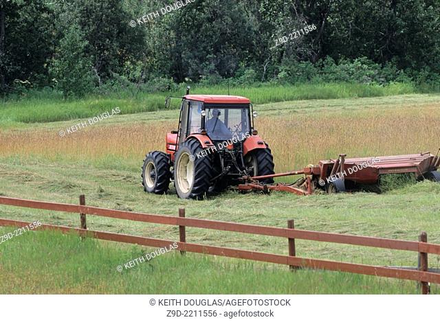 Farmer cutting hay, Bulkley Valley, British Columbia