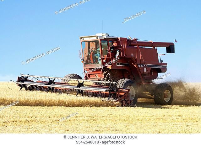 A combine harvesting wheat in the Palouse, eastern Washington State, USA