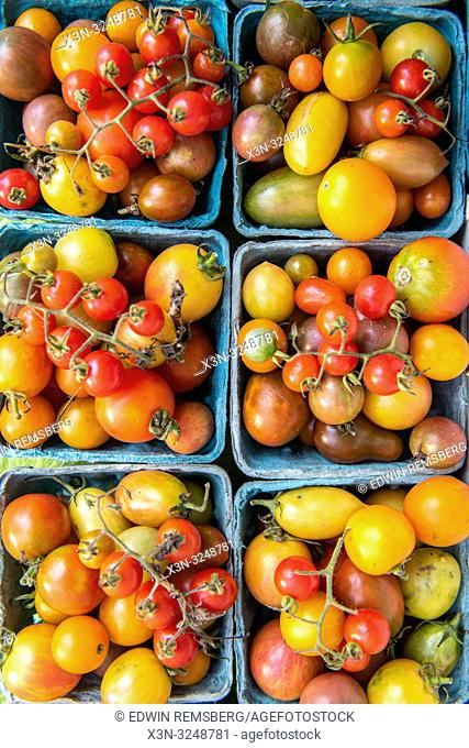 High angle view of cartons full of a variety of tomatoes (Solanum lycopersicum) for sale at farmers' market, Rehoboth Beach, Delaware