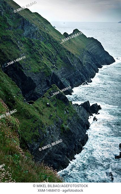 coastal cliffs in the Skellig ring, Iveragh Peninsula  County Kerry, Ireland