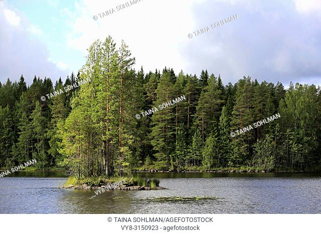 Small island on a quiet forest lake in Central Finland in early autumn