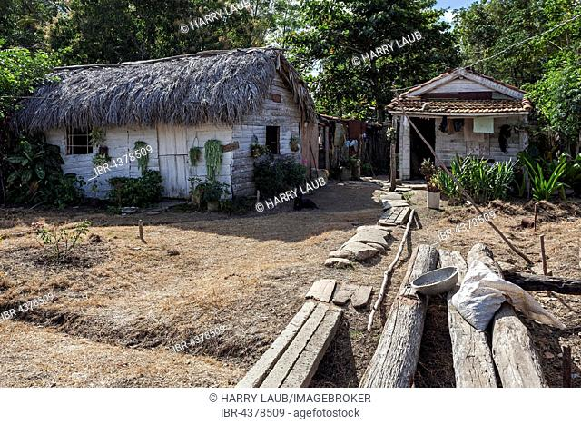 Typical rural property, wooden houses, farmhouse in Camagüey, Cuba