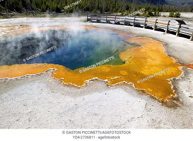 Yellowstone National Park, Idaho, Montana and Wyoming, USA