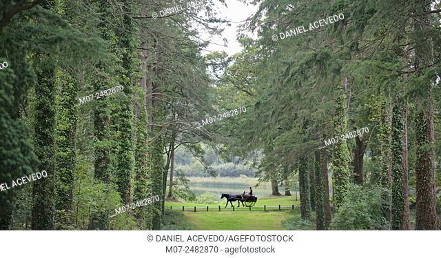 Dromoland, Newmarket-on-Fergus, Co. Clare, Ireland, Europe