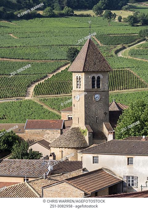 Vineyards surrounding Solutre Pouilly Saône-et-Loire Bourgogne-Franche-Comte France