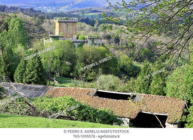 Castle of Pambre medieval fortress, Palas de Rey, Lugo province, Galicia, Spain